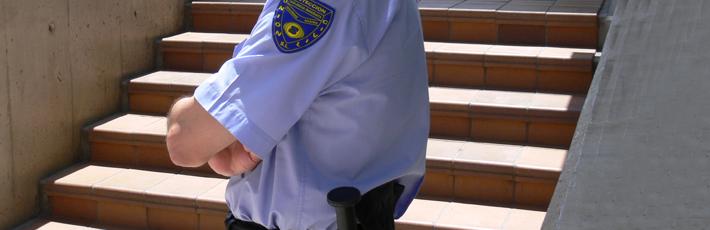 vigilantes de seguridad con o sin armas